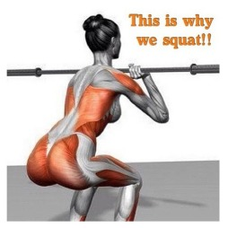 Squats-This-is-why-we-squat